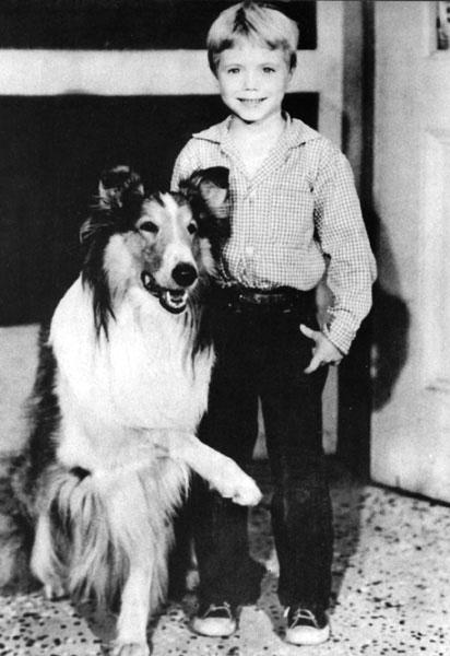 「名犬ラッシー」の画像検索結果